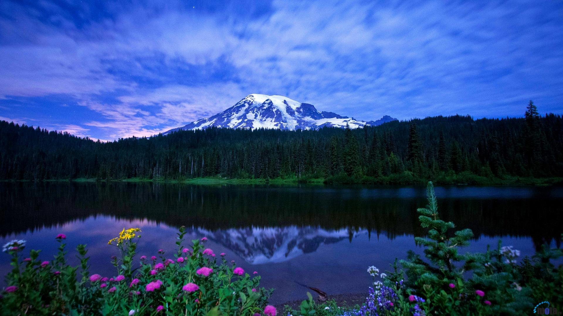 Pics Photos   Mount Rainier Wallpaper 1920x1080