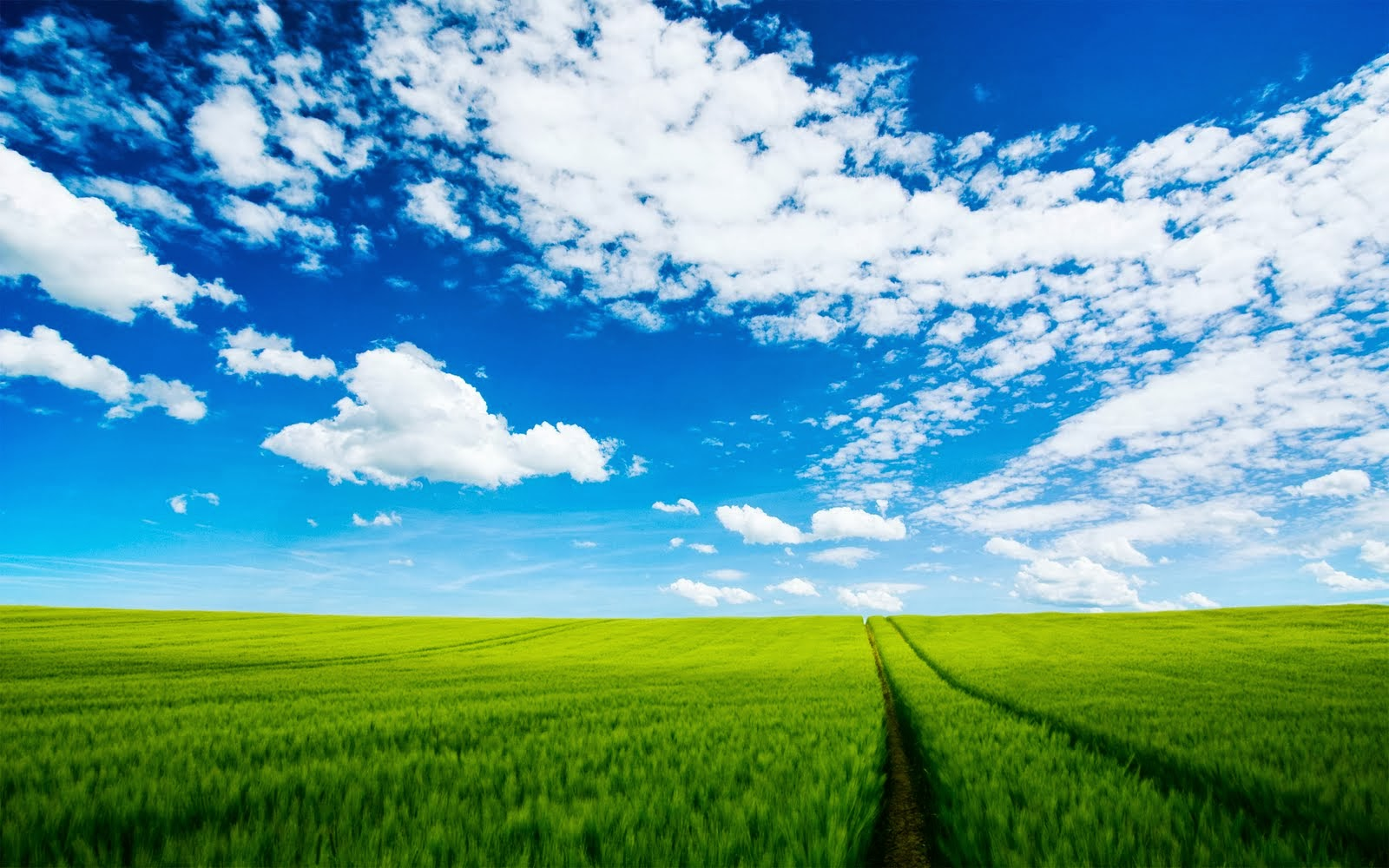 Wallpapers Zone Beautiful Blue Sky Wallpapers 1600x1000