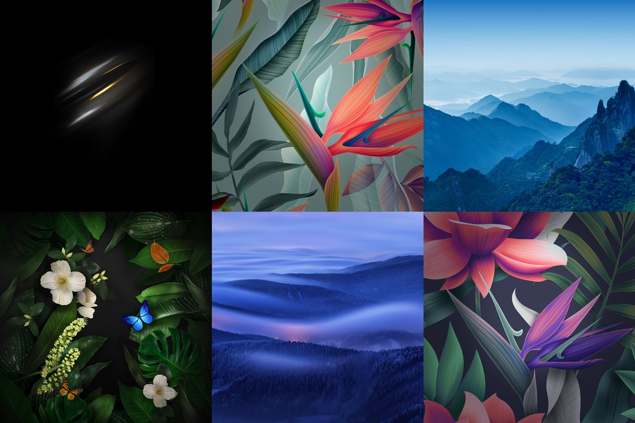 Download Huawei Mate 10 wallpapers 1250x833
