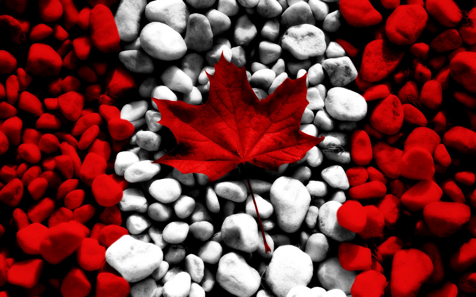 Awesome Canada Flag Designs HD Wallpapers Desktop Wallpapers 1600x1000