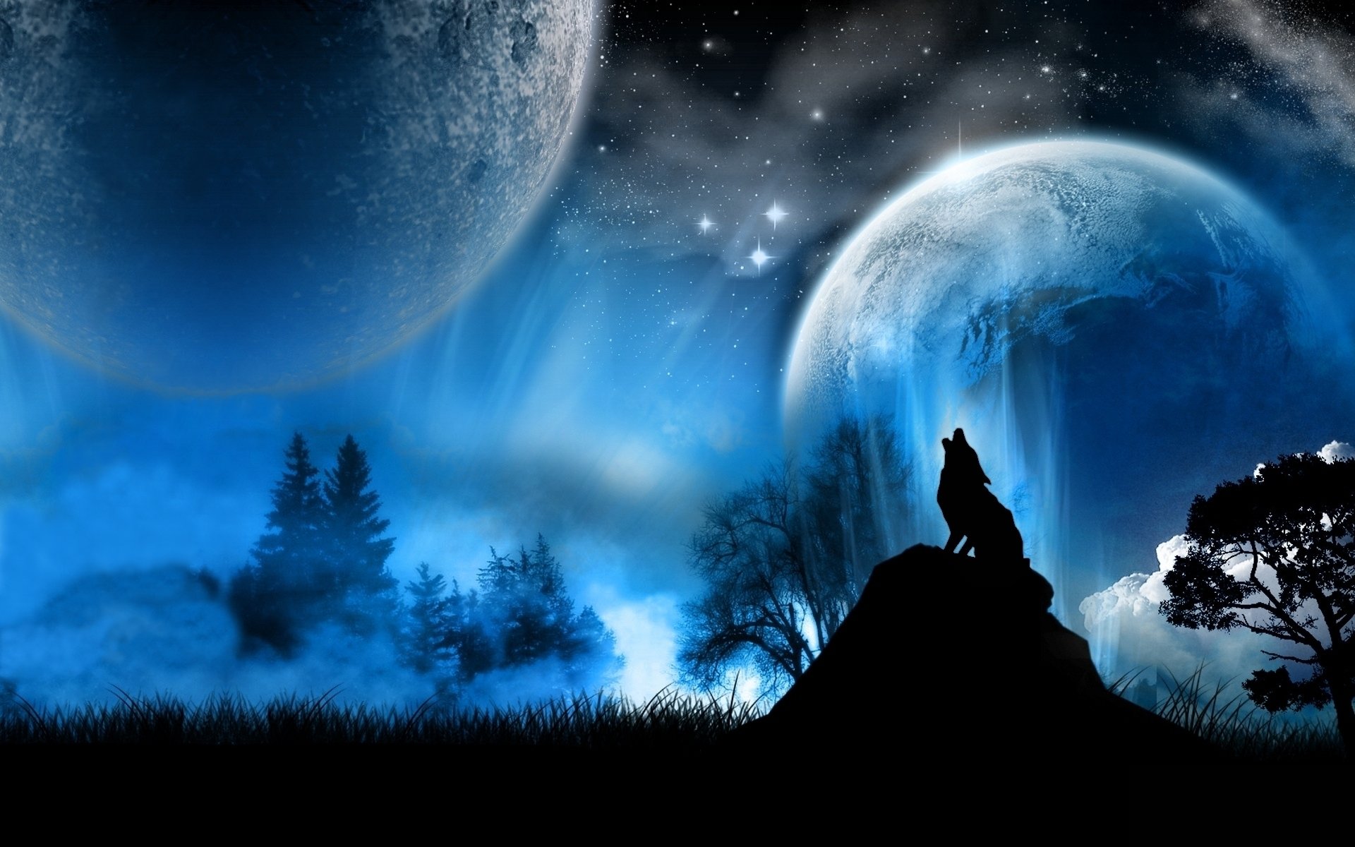 Wolves Wolf 1920x1200
