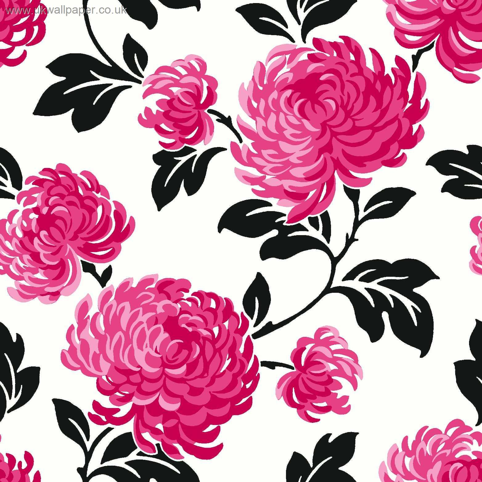 Pink and black floral wallpaper for Bright pink wallpaper uk