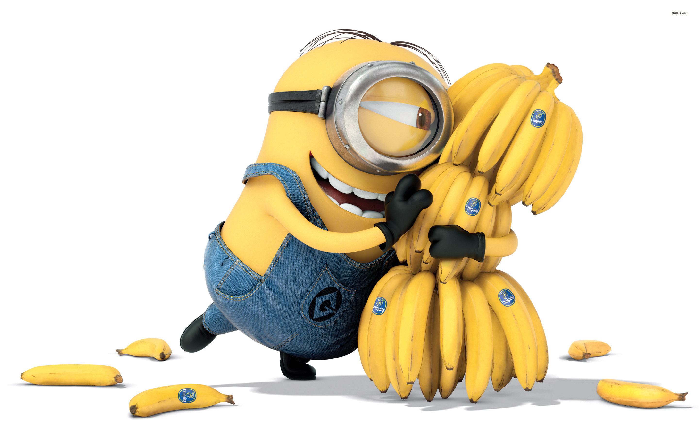 Minion loves bananas wallpaper   1069776 2880x1800