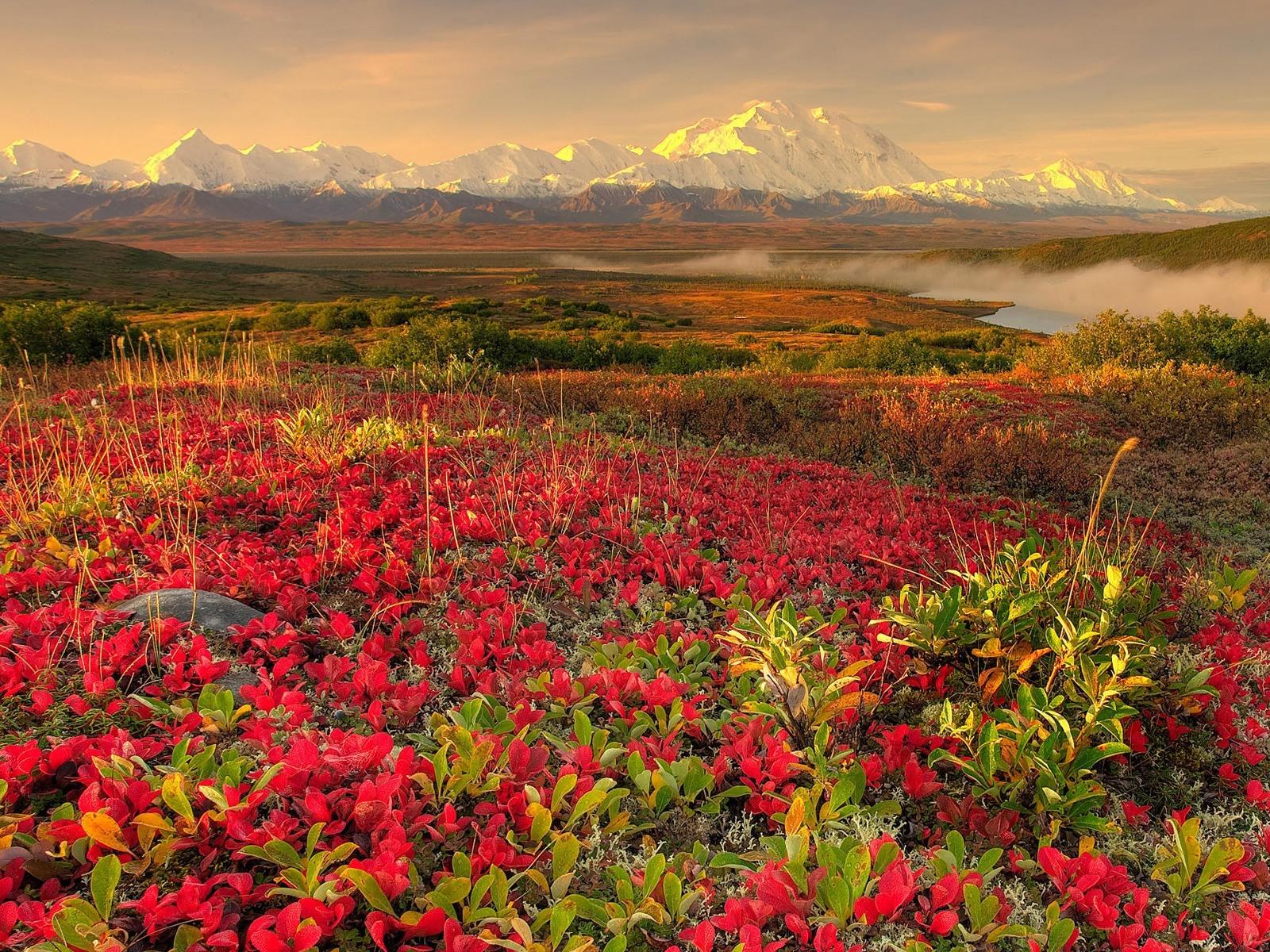Spring Landscape desktop wallpaper 1600x1200