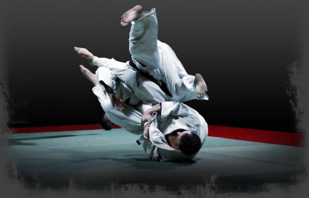 Image Result For Download Jiu Jitsu