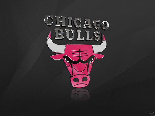 Chicago Bulls 3D Logo Wallpaper nba Chicago Bulls 3D Logo 500x375