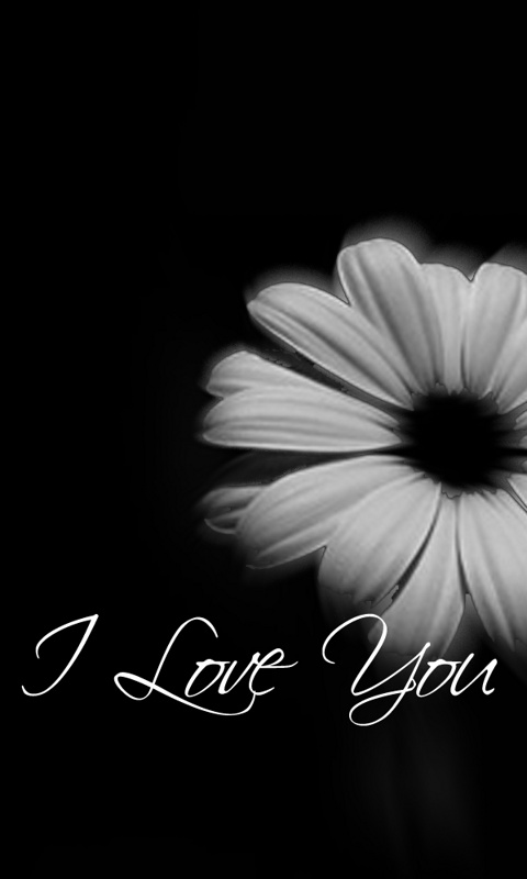 Black And White Love Mobile Wallpaper   Easy Pic Download 480x800