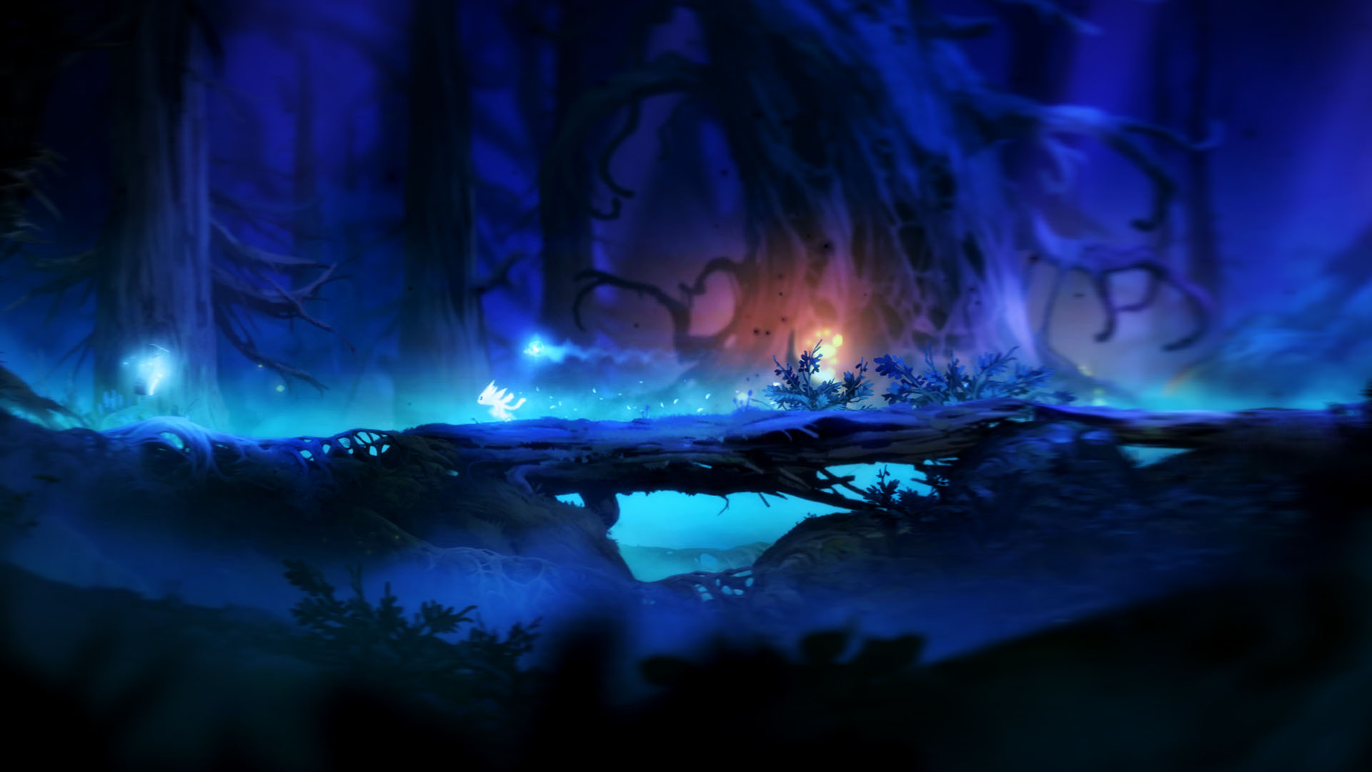 Special Ori and the Blind Forest Wallpaper | Full HD Pictures