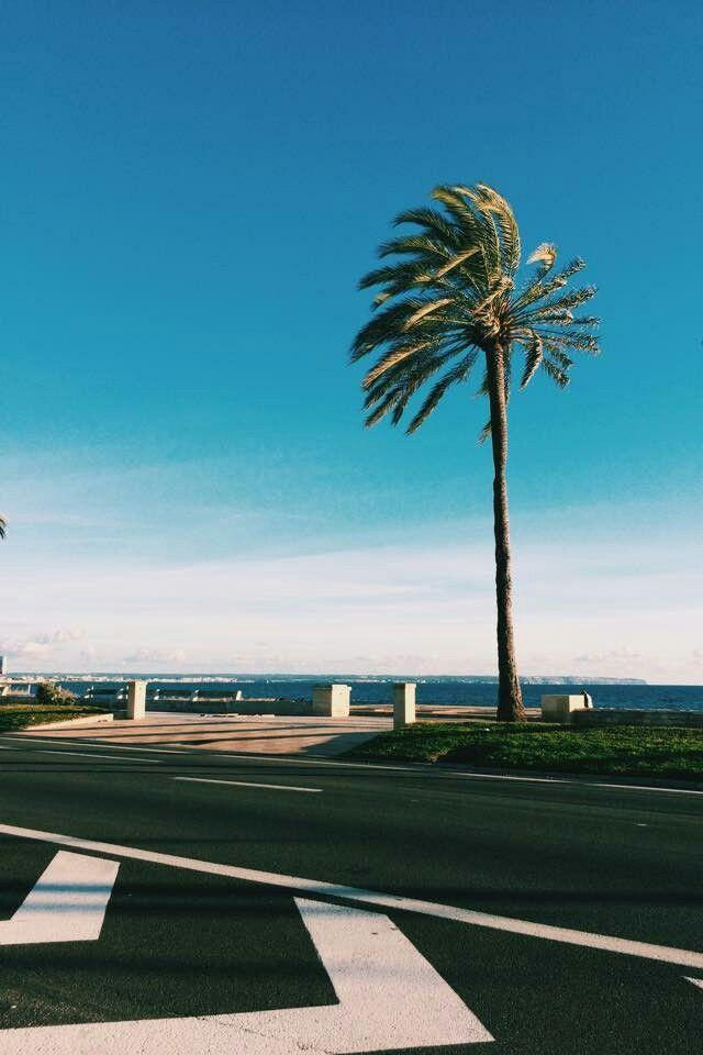 Palma de Mallorca Airport PMI Iphone wallpapers 2019 640x960