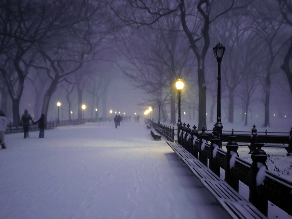 Central Park Winter Wallpaper 1024x768