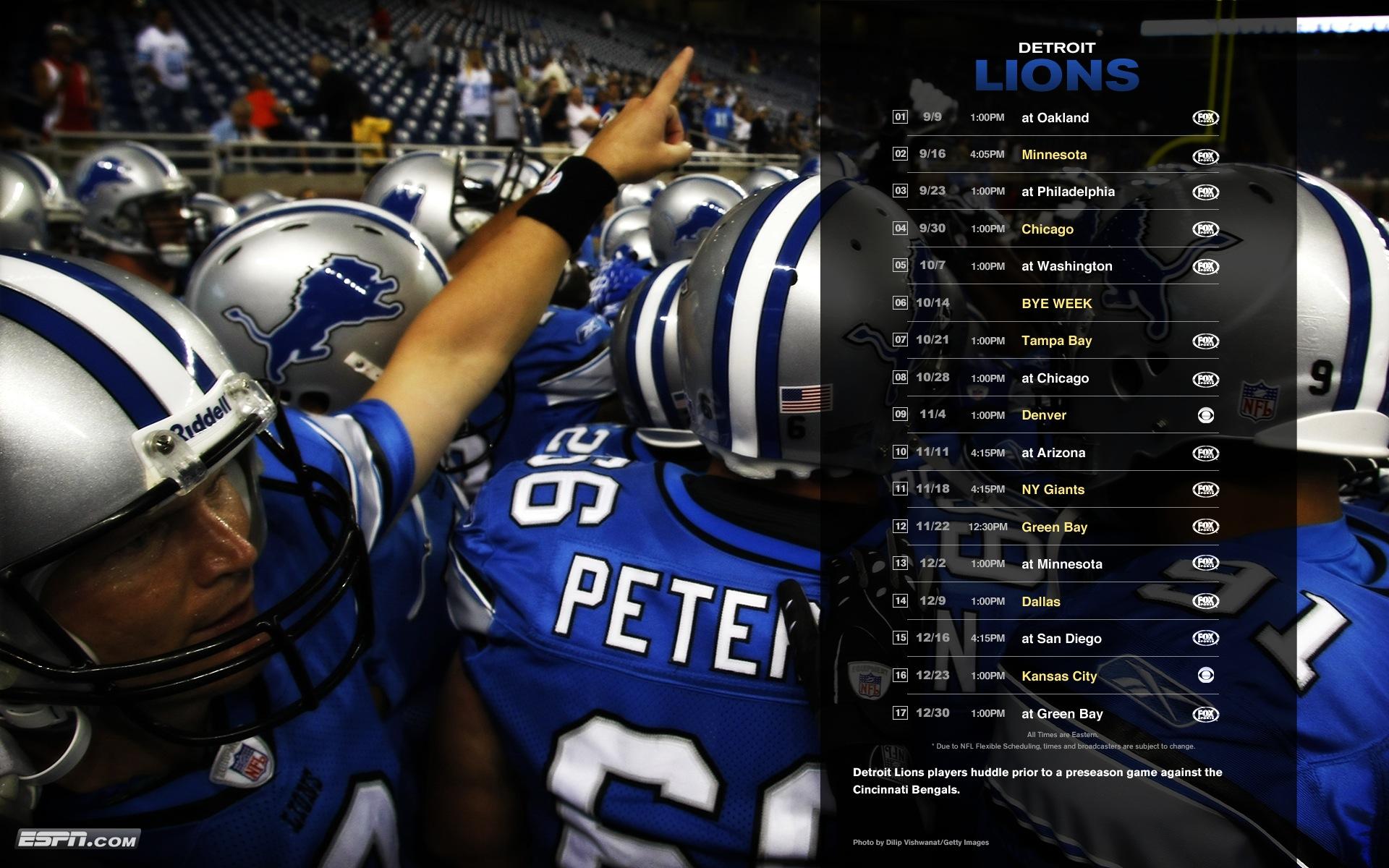 Download Detroit Lions wallpaper detroit lions wallpaper 1920x1200
