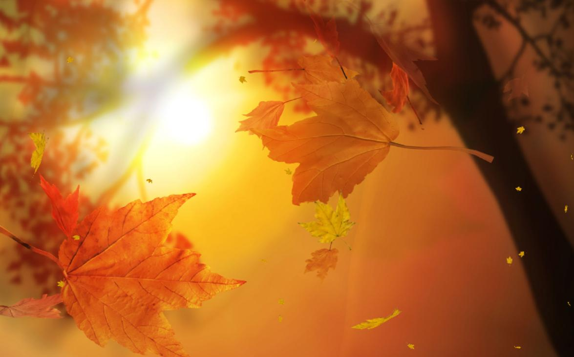 Download Leaf Fall Animated Wallpaper DesktopAnimatedcom 1175x732
