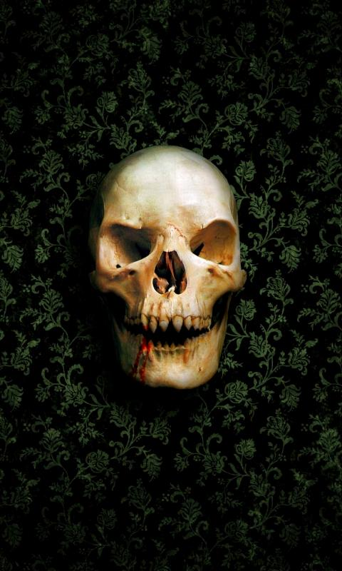 free 480X800 skull 480x800 wallpaper wallpaper screensaver preview id 480x800