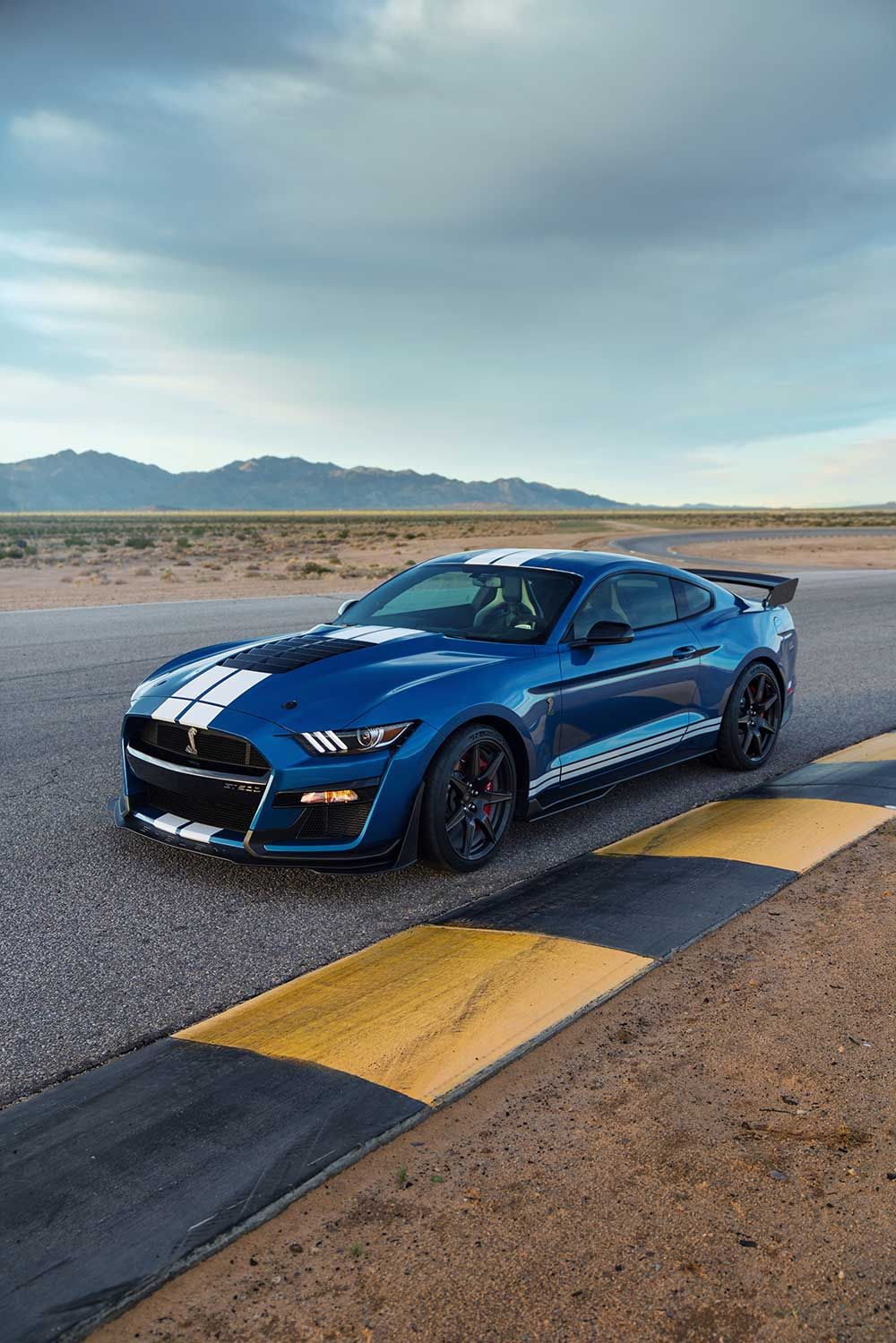 Ford Mustang Shelby GT500 Pictures Wallpapers   Throttlebias 1000x1499
