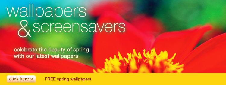 Wallpapers Screensavers at American Greetings 750x283
