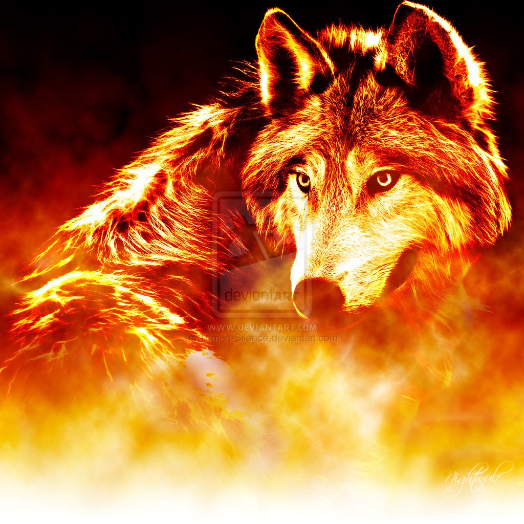 Wolf Of Fire Blue Flame Wolf...