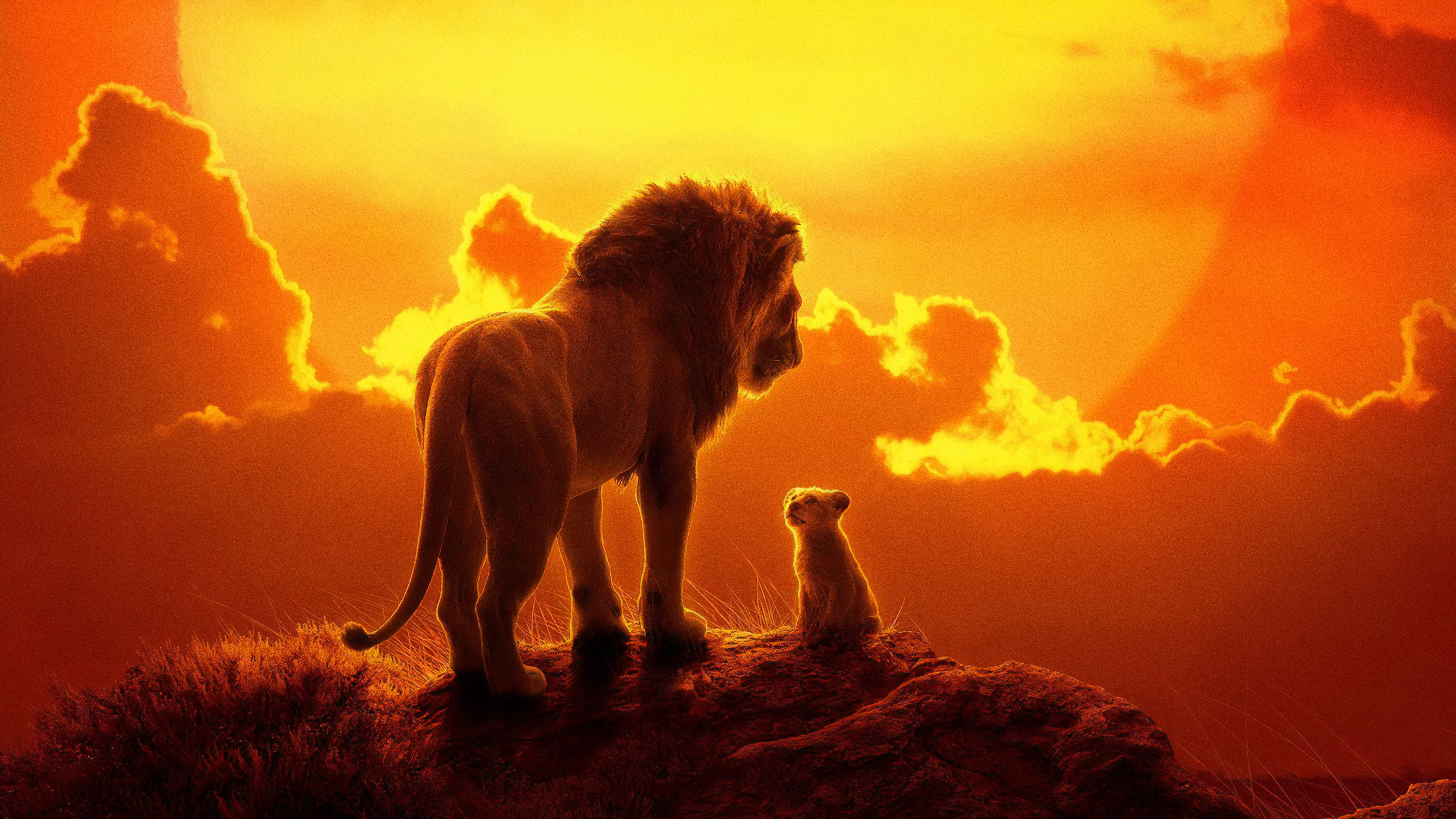 The Lion King 2019 HD Wallpaper Background Image 3375x1898 3375x1898