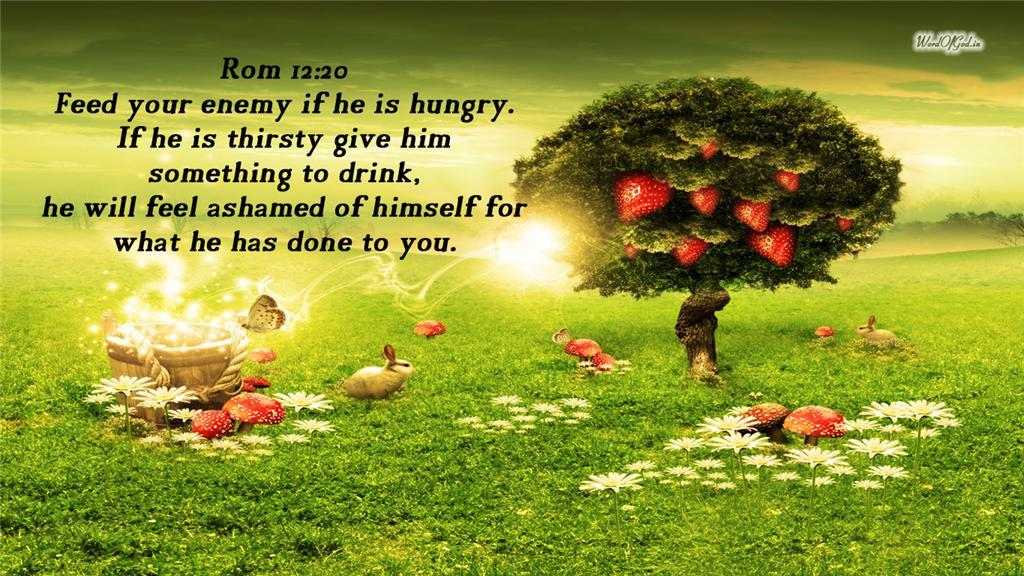 Feed your enemy if he is hungry 1024x576