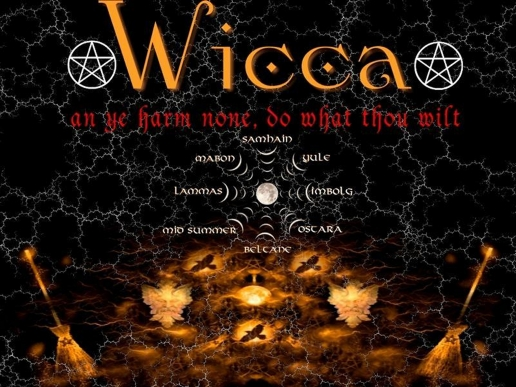 Electric Orange Wicca desktop Wallpapers 29 516x387