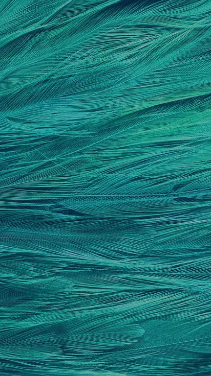 50 Cool Wallpapers HD for iPhone 7 and 7 Plus [ Download] 432x768