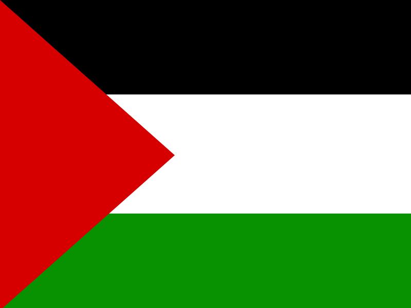 Palestine flag 800x600