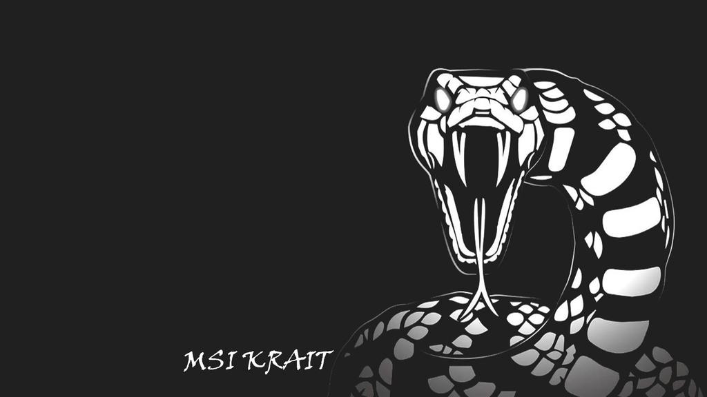 MSI Krait desktop background by jogrady96 1024x576