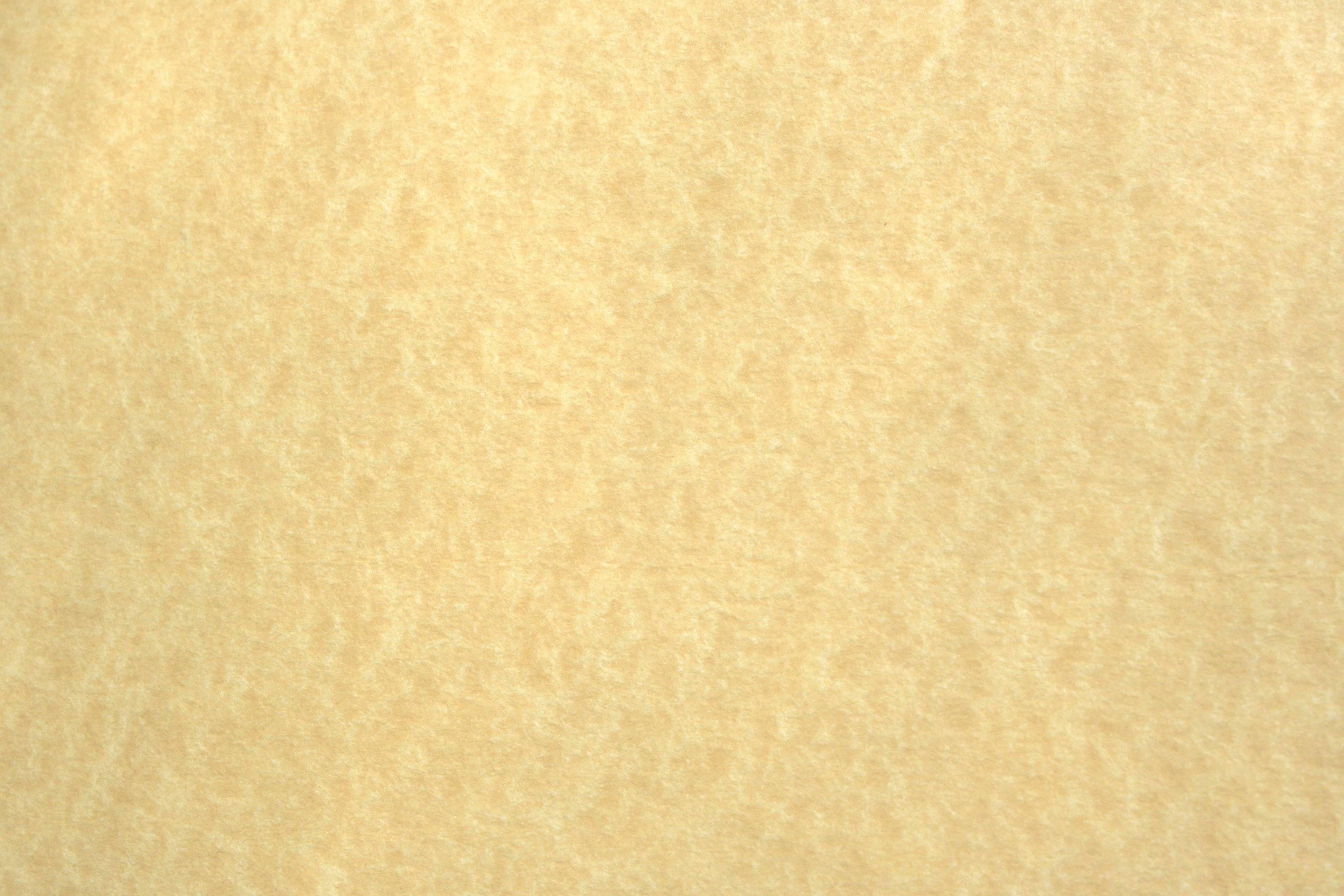 68315d4a537d 3888x2592px Cream Colored Wallpaper - WallpaperSafari