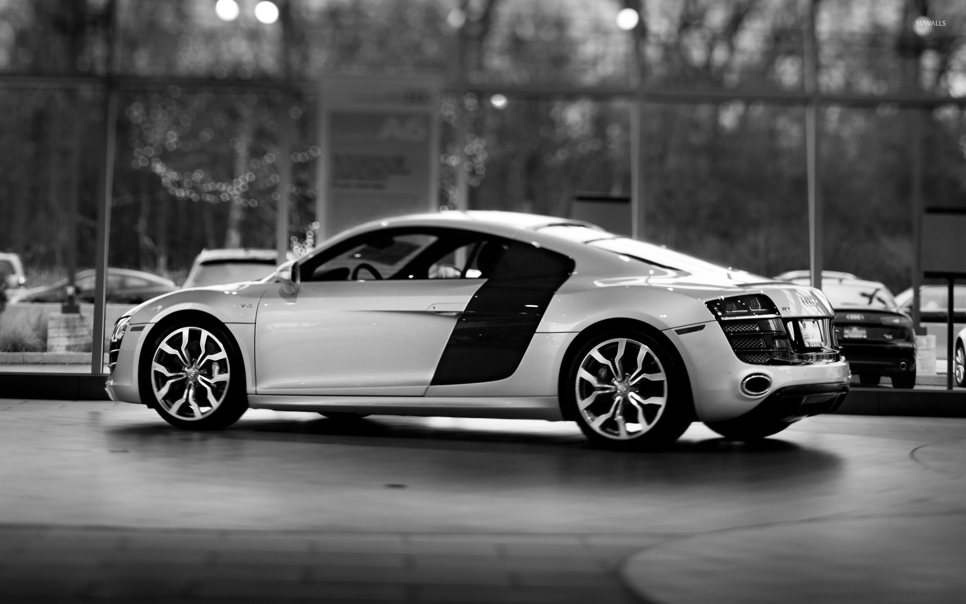 Audi R8 V10 wallpaper   Car wallpapers   16354 1920x1200