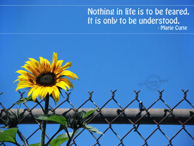 quote and the picture of the yellow flower amazing wallpaper quotes 640x480