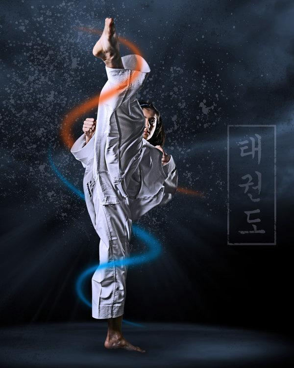 Wallpapers Taekwondo Induk 600x750