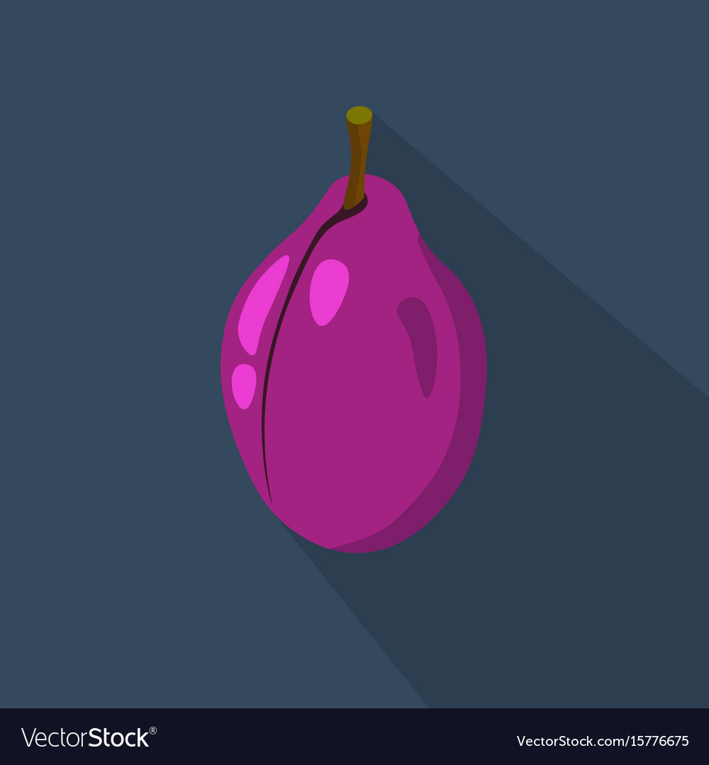 Plum cartoon flat icondark blue background Vector Image 1000x1080