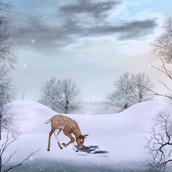 Cute Winter Background with Deer 600x600