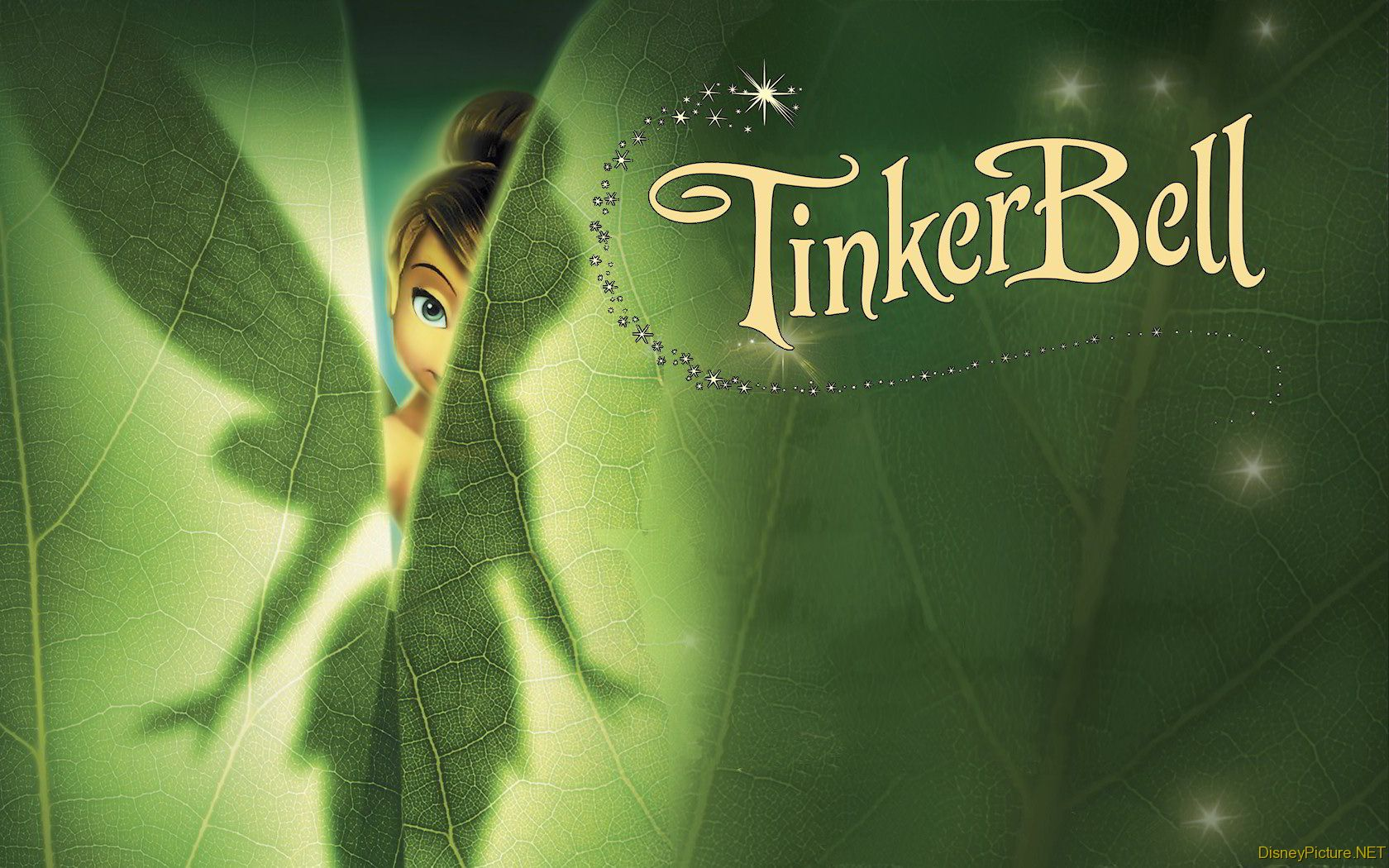 Free Download Free Tinkerbell Wallpaper Wallpaper And