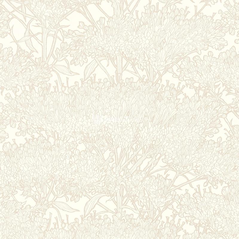 Wallpaper 369727 Absolutely Chic online shop wallcovercom 800x800