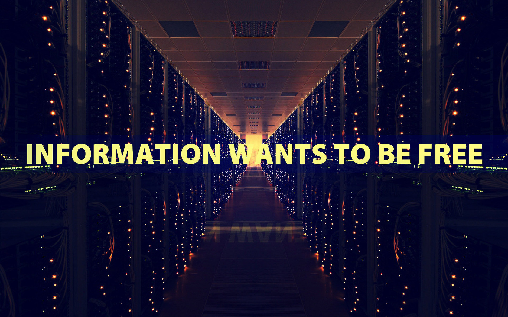 Download Information wants to be wallpaper 1680x1050