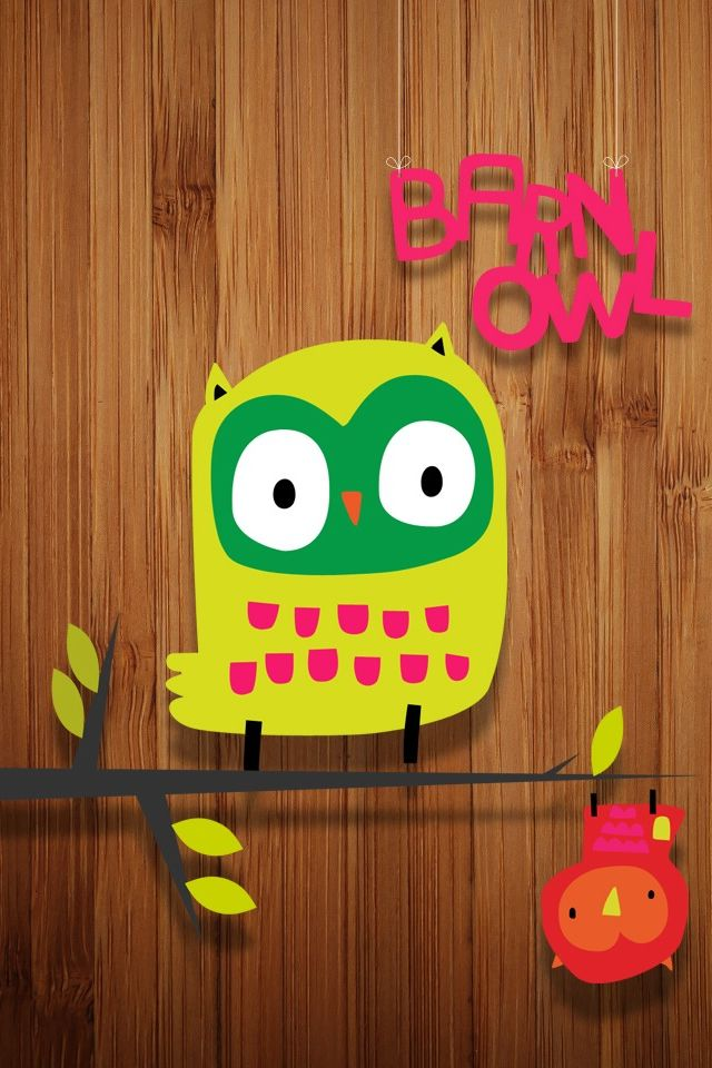 Funny Cute Owl iPhone 4s Wallpaper iPhone 4s Wallpapers Pinte 640x960