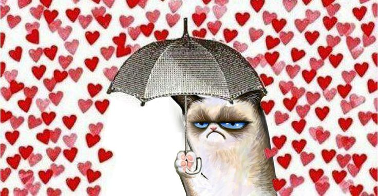 Grumpy Cat does not like Valentines Day Valentines Day Pets Pin 736x383
