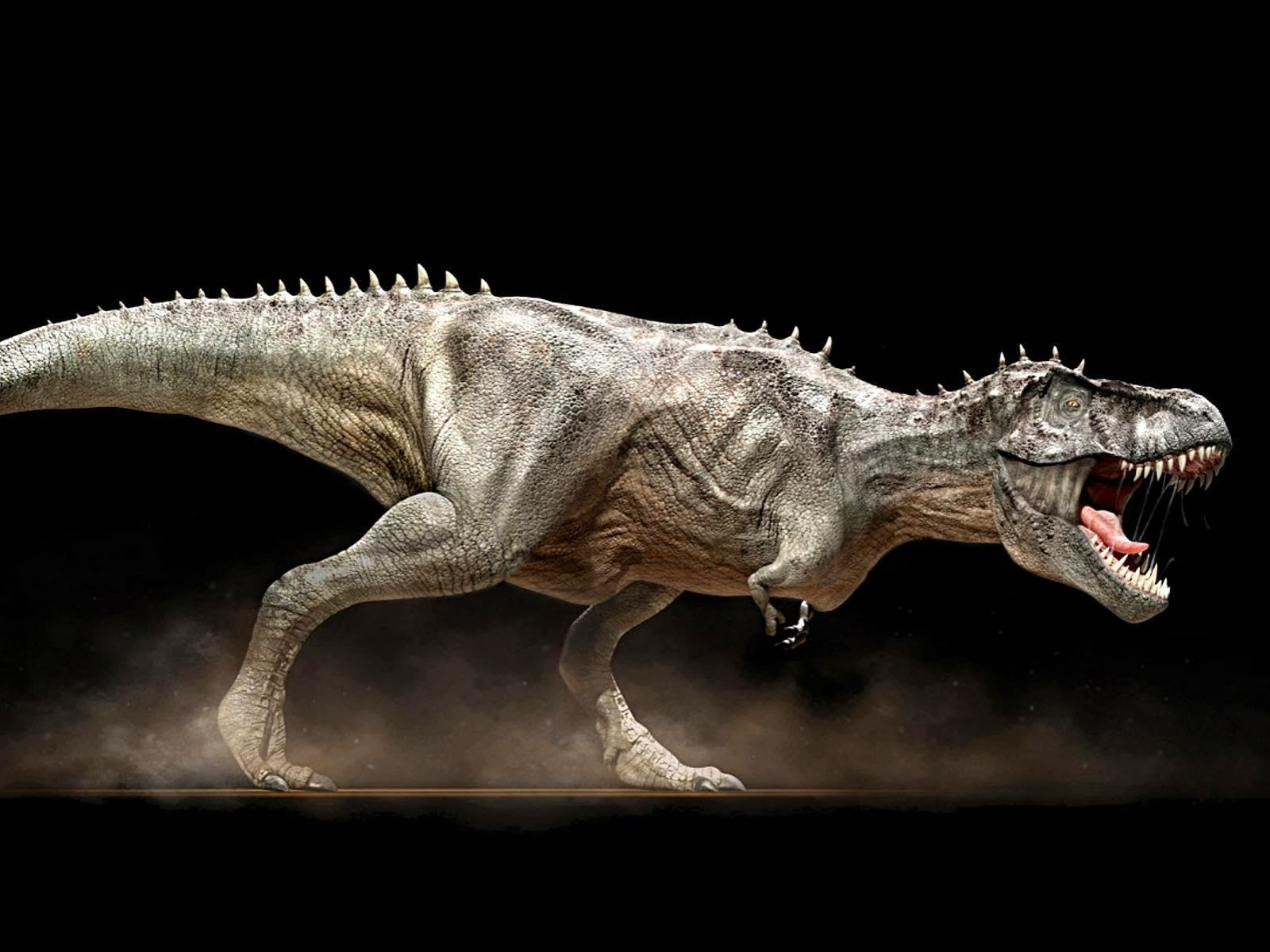Dinosaurs HD Wallpapers 1600x1200