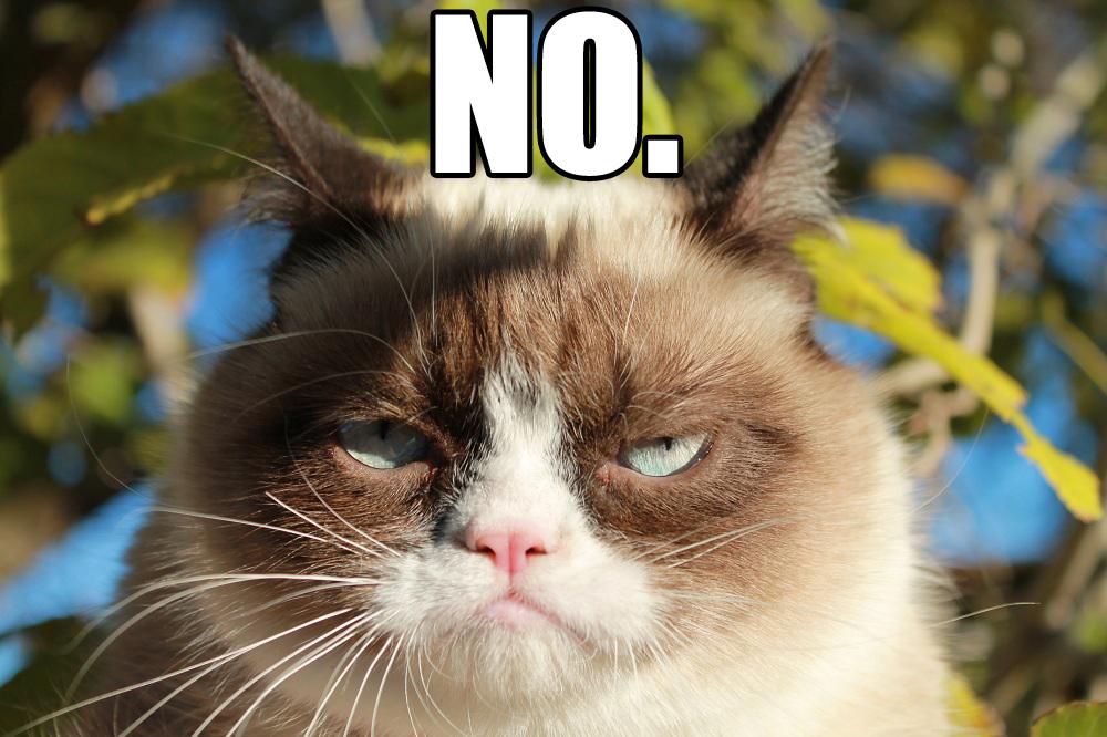 Grumpy Cat Saying No 1000x666