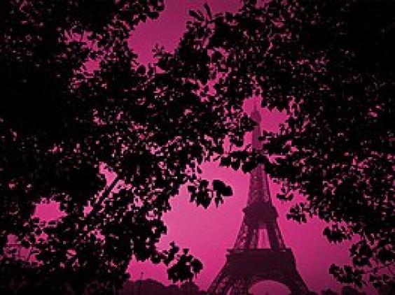 Pink wallpaper 564x422