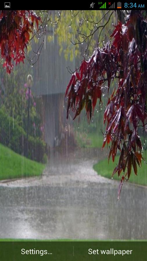 Rain Live Wallpaper v10   Games World 506x900