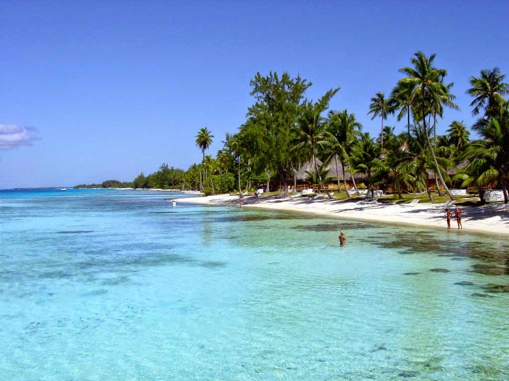 Tropical Beach Chairs Free Wallpaper Wallpapersafari