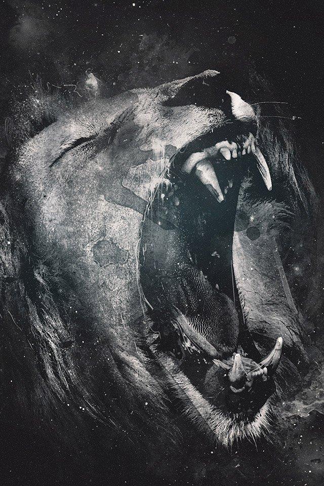 FREEIOS7 lion roaring   parallax HD iPhone iPad wallpaper 640x960