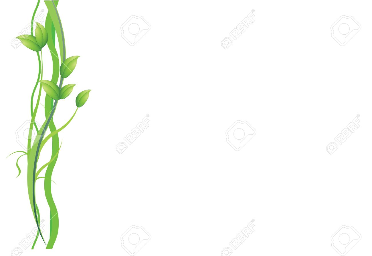 A Green Plant And Vines On White Background Royalty Cliparts 1300x895