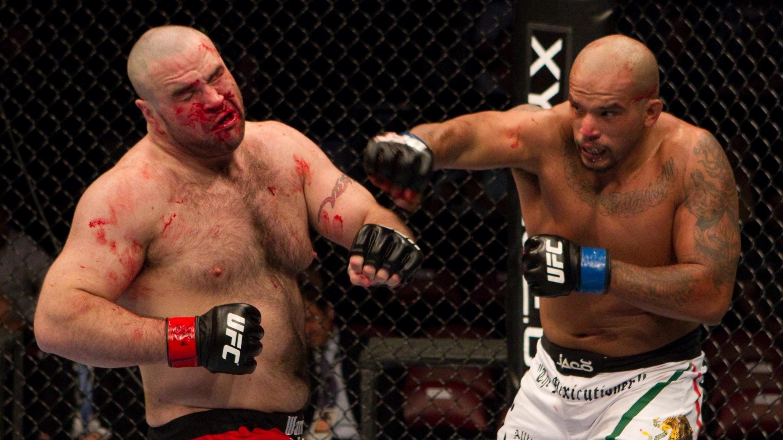 UFC mma martial arts battle blood g wallpaper 2560x1440 171366 2560x1440