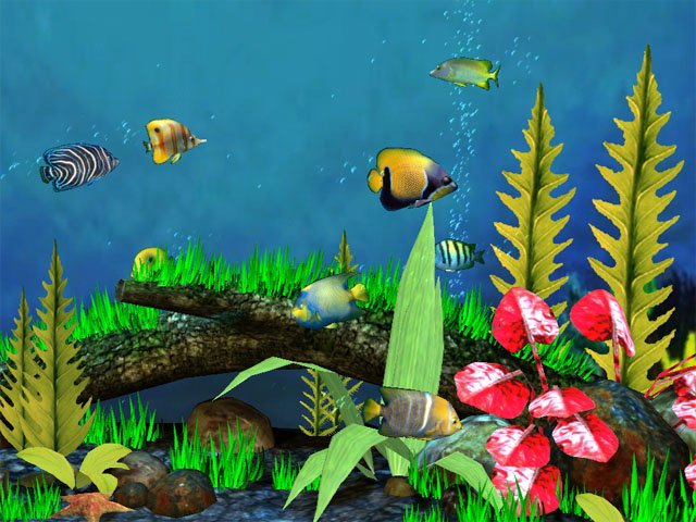 Download Every Iphone Live Wallpaper Live Fish Iphone: Aquarium Wallpapers For Windows 8