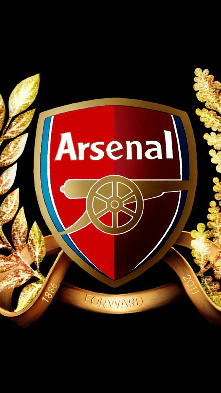 Arsenal Micro iPhone 6 Wallpapers iPhone 6 Backgrounds and Themes 750x1334
