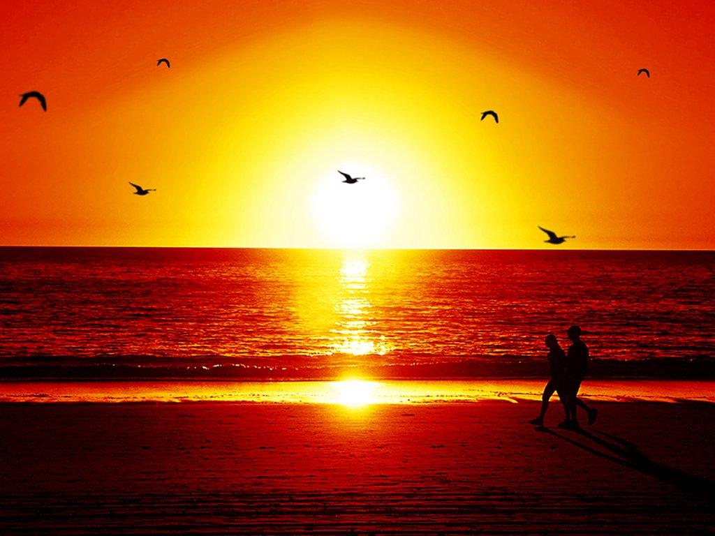Beautiful Sunset in Beach Wallpaper HQ   Nature Wallpaper 1024x768