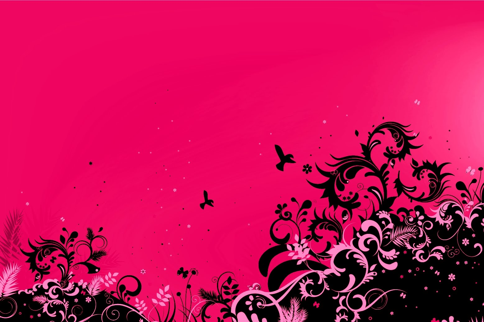 50 Pink Wallpaper For My Desktop On Wallpapersafari