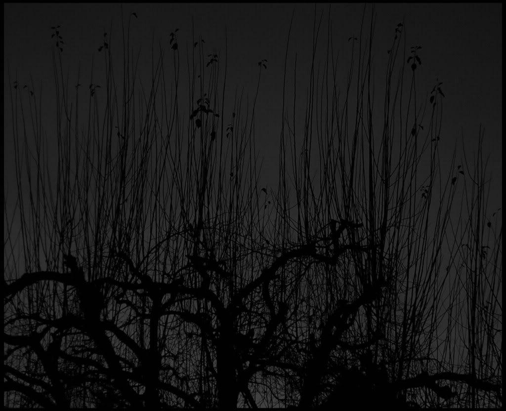 Black And Grey Wallpaper Black And Grey Desktop Background 1024x832